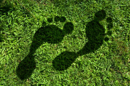 Shadow Footprint