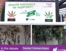 SBS Insight marijuana debate